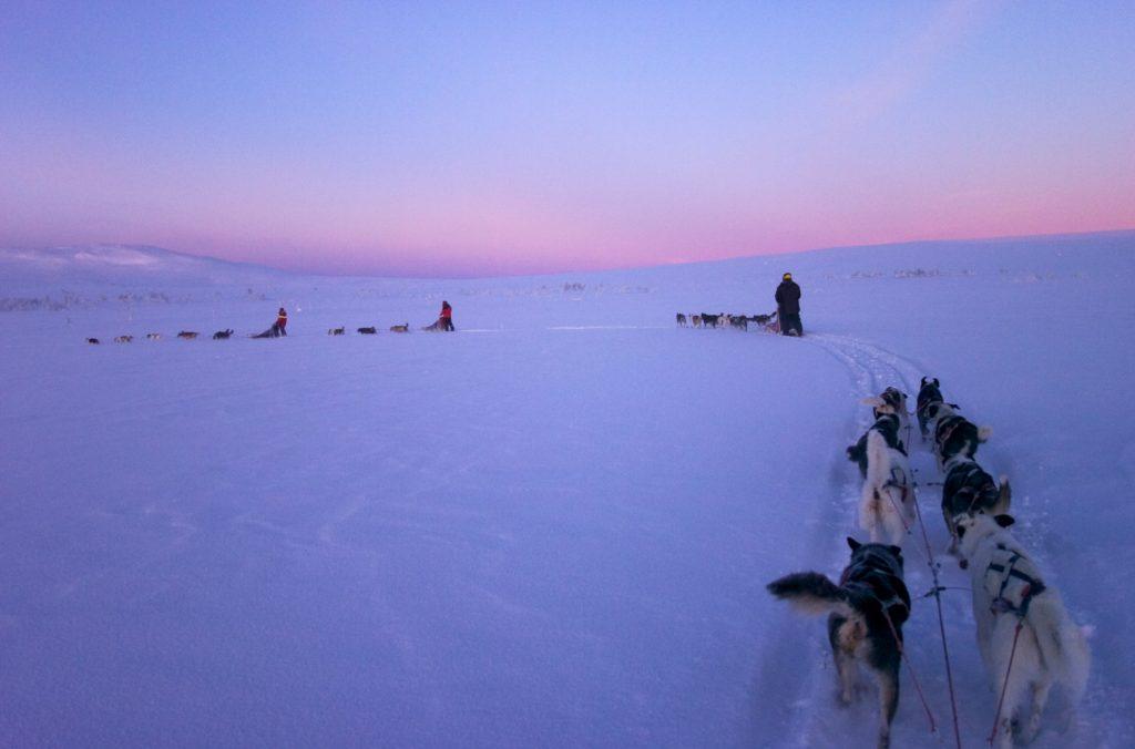 Szwedzka Laponia - kraina Samów